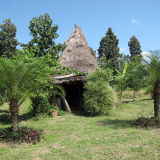 The first hut built by Ong